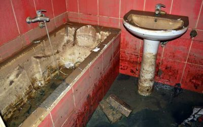 The Perils of Sewage Backups