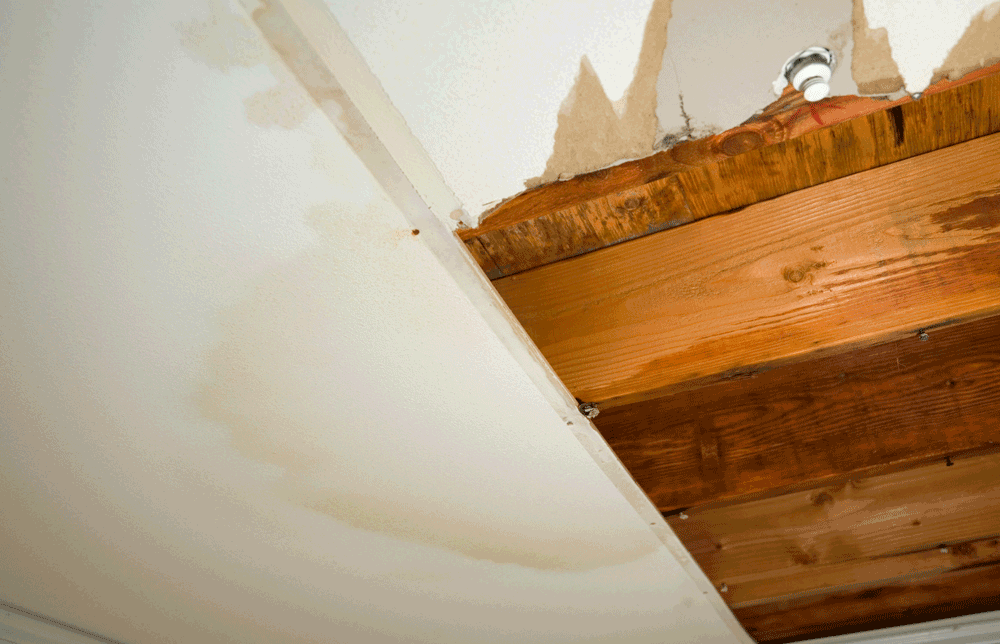 Water and Flood Damage – How Professional Cleanup Helps